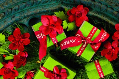Image of Aveda Holiday Presents