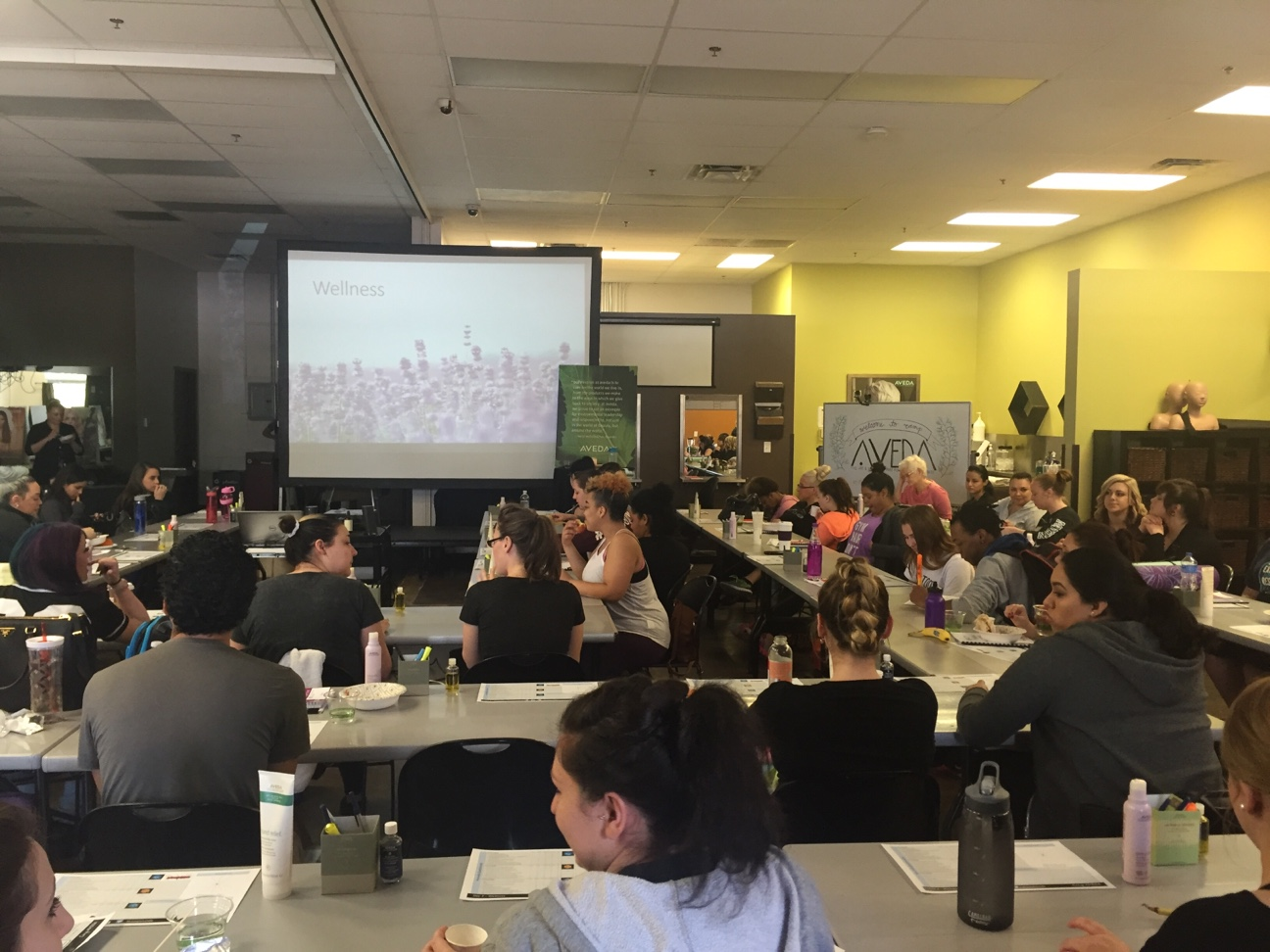 Orlando beauty School classes begin
