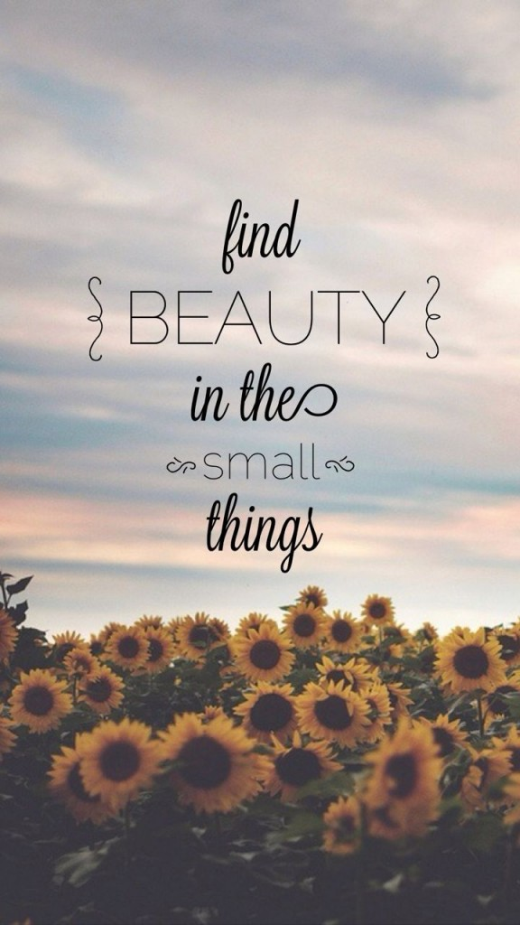 beauty in small things quote
